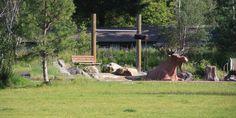 Carkeek Park Playground, Barker Landscape Architects, Seattle Washington,