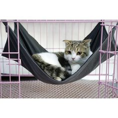 2017 Summer And Winter Dual Use Cat Bed Mat Oxford Fabric Pet Cages Hammock Under The Chair