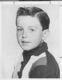 jerry mathers family