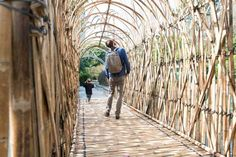 Image result for chinese bamboo bridge