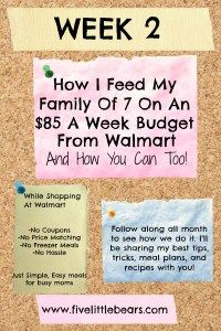 How I Feed My Family Of 7 On A $85 Week Budget From Walmart – Five Little Bears