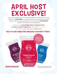 Scentsy host EXCLUSIVE..BRICKS!