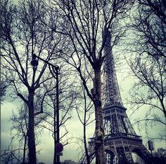 beauty. #Paris
