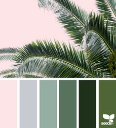 ✮ Color Frond 8 May 17 Design Seeds ® 2018 Color Schemes Colour Palettes, Green Color Schemes, Green Colour Palette, Bedroom Color Schemes, Bedroom Colors, Green Colors, Colours, Color Trends, Color Combinations