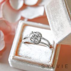 A spiral split shank engagement ring from Sylvie showcasing a spiraling halo of diamonds 💎 See this style and many more on our website! Split Shank Engagement Rings, Engagement Ring Photos, Princess Cut Rings, Halo Diamond Engagement Ring, Designer Engagement Rings, Wedding Ring Bands, Beautiful Rings