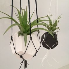 White/black cement hanging planters