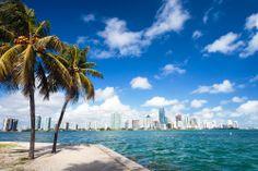 En #Miami, sitio paradisíaco del sur de la #Florida, hay miles de aventuras asombrosas para vivir al máximo, de uno de los destinos más edénicos de #EstadosUnidos. http://www.bestday.com.mx/Miami-area-Florida/Atracciones/