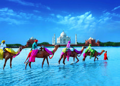 The range of Golden triangle tours in India is so wide and fabulous. It is a sojourn to the rich history, and tradition of India. All major tourist destinations in India can be sorted under the major title of Golden Triangle. New Delhi, Cheap Tickets To India, Rent Car, The Places Youll Go, Places To Visit, Taj Mahal, Golden Triangle, Holiday Places, India Tour