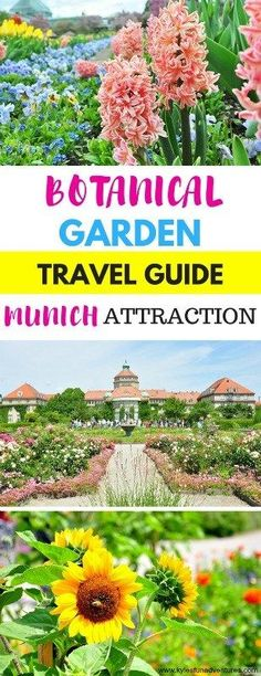 The Beautiful Botanical Garden in Munich, Germany | Travel Guide Munich Attractions | #Germany #Travel