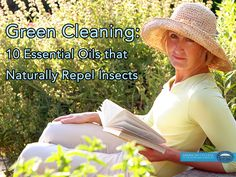 Green Cleaning: 10 Essential Oils that Naturally Repel Insects