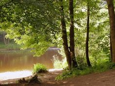 River Tees at Low Coniscliffe Near Darlington, England