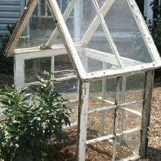 Greenhouse made out of old windows!!!