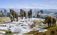 Ice Age - BBC Nature