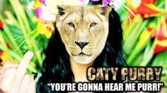 [Photoshop Fan-art] - Caty Purry!