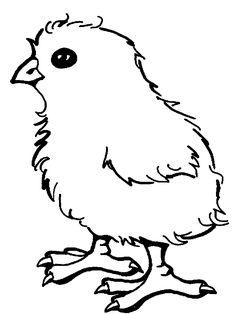 La Eduteca: CUENTO | El pollito Pito (Recursos para trabajar el cuento)