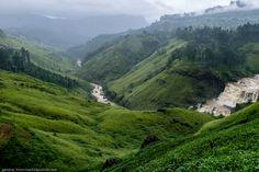 URBAN EXPLORATION - Горная Шри-Ланка: водопады, горы и чайные плантации