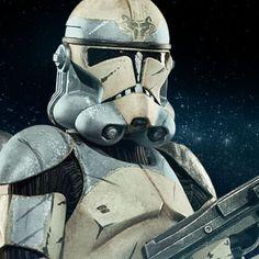 Star Wars Wolfpack Clone Trooper: 104th Battalion Sixth Scale Figure