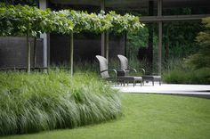 http://aplandscaping.be/Moderne_Tuin.html