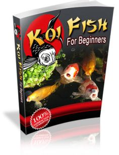 The Most Effective Tips for Koi Pond Maintenance | koi-care.com