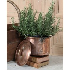Accessories | Culinary Antiques | Antique Hand-Made Copper Pot | www.inessa.com