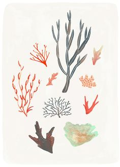 Alice Ferrow - London based artist/illustrator