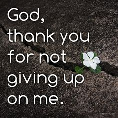 God, thank you for not giving up on me.