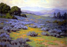 Gamble, Santa Barbara Landscape