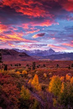 Mountain Autumn Sunrise (San Juan Mountains, Colorado) by Andrew Soundarajan on 500px