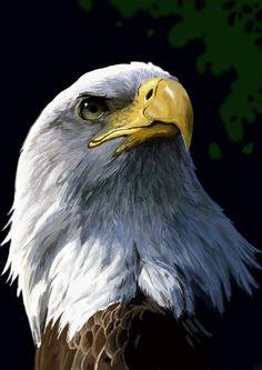 """""""Eagle"""" par Yugi"""