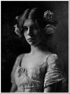 Mathilde Weil – Rosa Rosarum. 1901