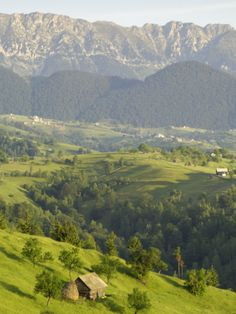 Transylvanian Alps, Near Fundata, Transylvania, Romania, Europe Photographic Print by Gary Cook at AllPosters.com