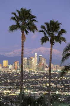 Be like a local in Los Angeles & explore it like never before using TripHobo Trip Planner. What to visit in Los Angeles? Find information about a lot of interesting places, that you should visit on the USA on Places To Travel, Places To See, Travel Destinations, Downtown Los Angeles, Los Angeles Skyline, Torre Eiffel Paris, City Of Angels, California Dreamin', Monrovia California