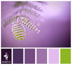 Purple & Green Fern: Purple, Lilac, Pastel, Green - Colour Inspiration Pallet