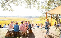 Sonoma's Scribe Winery   Travel + Leisure