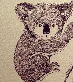 Koala Koala Bears, Australian Bush, Becca, Fascinator, Flora, Teddy Bear, Drawings, Illustration, Animals
