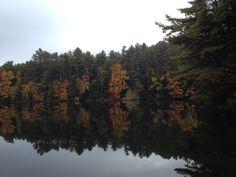 Fall at lake