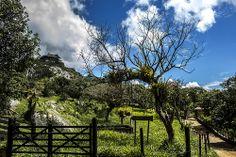 Serra Negra, Pernambuco
