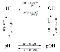 Calculations of pH, pOH, [H+] and [OH-] - Helpful in chem