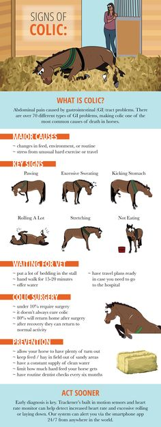 Signs of colic