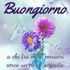 Good Day, Good Morning, Maria Teresa, Google, Night, Sicilian, Facebook, Messages, Colors