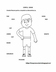Corpul uman fisa Preschool Writing, Preschool Songs, Romanian Language, School Humor, After School, Toddler Activities, Kindergarten, Classroom, Homeschooling