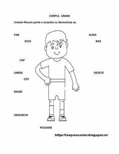 Corpul uman fisa Romanian Language, After School, Toddler Activities, Kindergarten, Preschool, Classroom, Teaching, Education, Memes