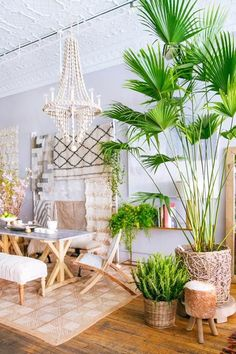 tropical home paradise style living space dream home