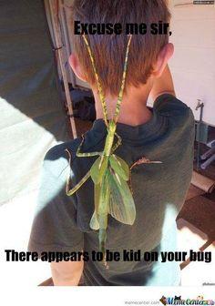Huge bug!