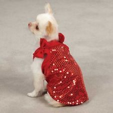 Pretty red sequined dress on a darling chi