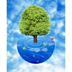 Lush green tree growing from half sphere of blue water and ripples floating in cloudy blue sky Canvas Art - Panoramic Images (30 x 36)