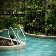 Backyard Ideas and how you can make a splash with them. Five elements to think of when designing their backyard. Coastal Homes, Swimming Pools, Backyard, Landscape, Building, Outdoor Decor, House, Design, Home Decor