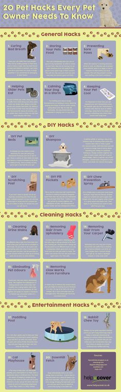 the significance of sterilization that every pet owner should know 30 things only dog owners understand there are a number of things that dog owners know to be true  every dog owner knows exactly what i'm talking.