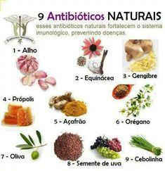 Antibióticos naturais
