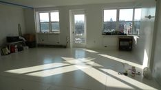 install and paint plywood floors